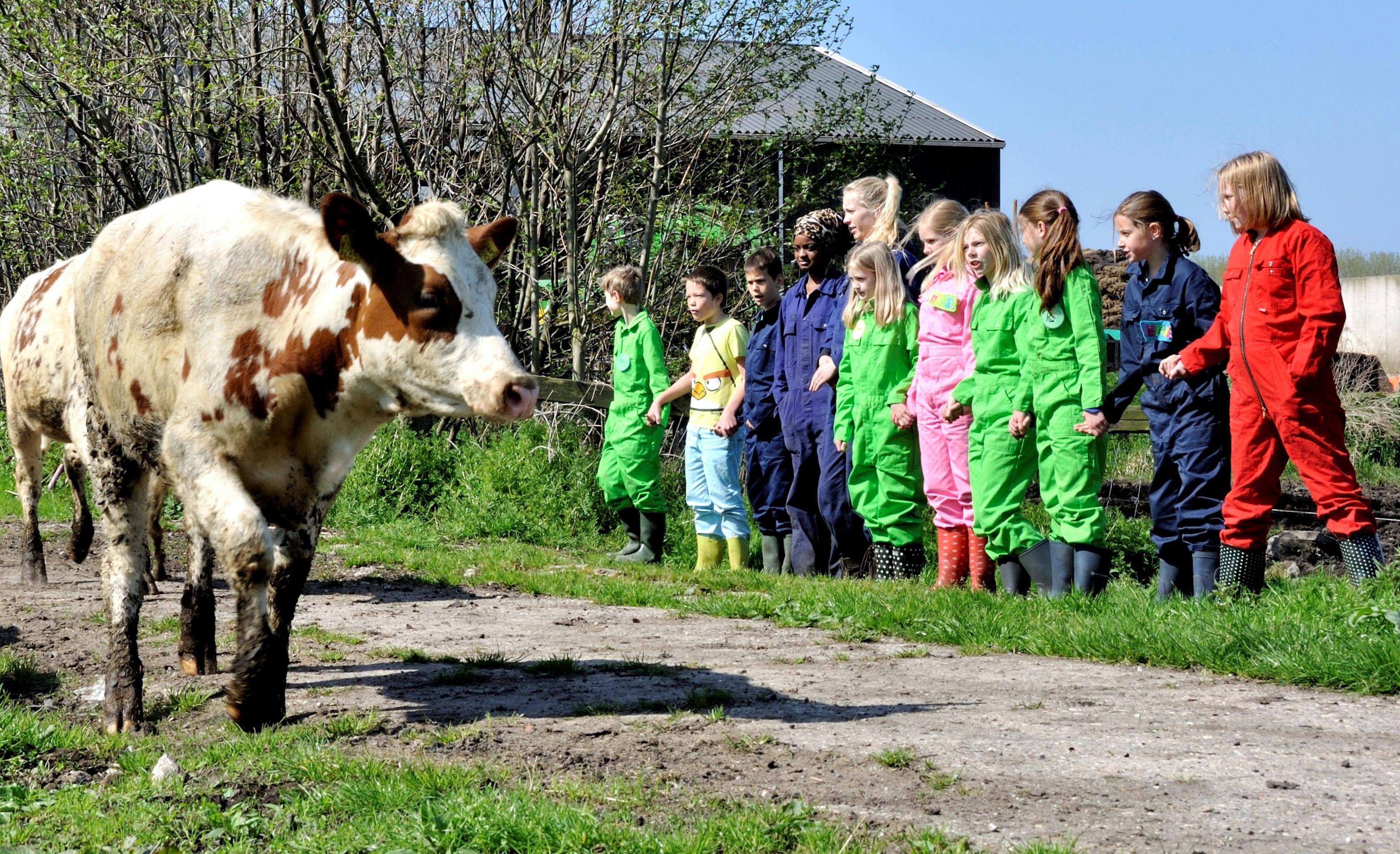 boerderijschool verbindt!